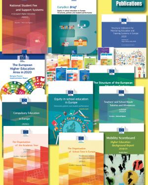 Publikacije Eurydice v letu 2020